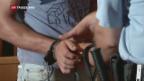 Video «Prozess gegen Lastwagen-Schlepper begonnen» abspielen
