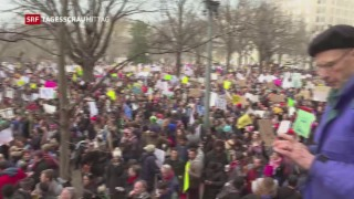 Video «Massenproteste gegen Donald Trump» abspielen