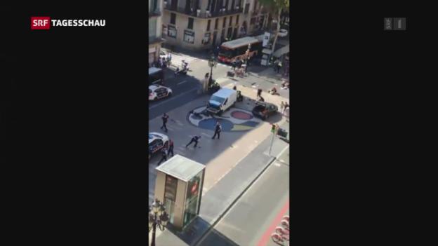 Video «Tagesschau vom 17.08.2017, 19:30» abspielen