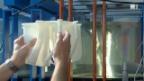 Video «Superturbine für Klein-Wasserkraftwerke» abspielen