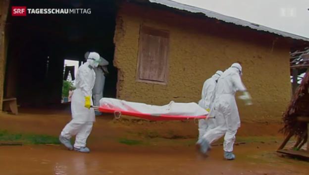 Video «Rasante Ausbreitung des Ebola-Virus» abspielen