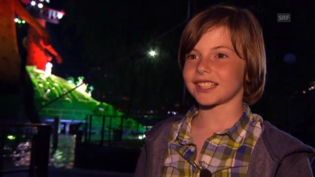 Video «Kindertaugliche «Zauberflöte?» Der Test» abspielen