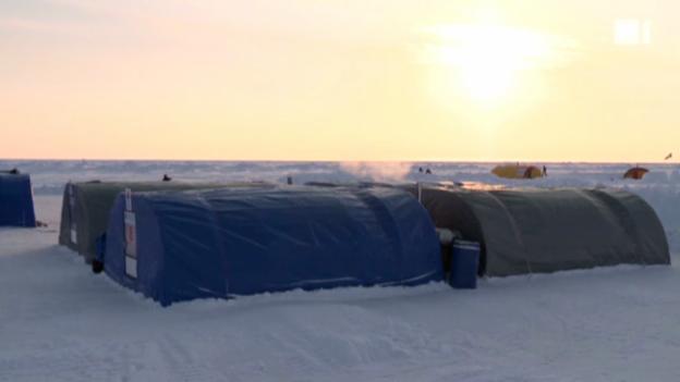 Video ««Einstein» am Nordpol» abspielen