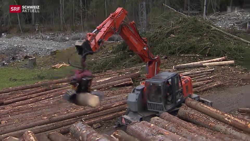 Nach Unwetter bei Schangnau: Noch tonnenweise Holz wegzuräumen