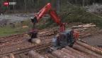 Video «Nach Unwetter bei Schangnau: Noch tonnenweise Holz wegzuräumen» abspielen