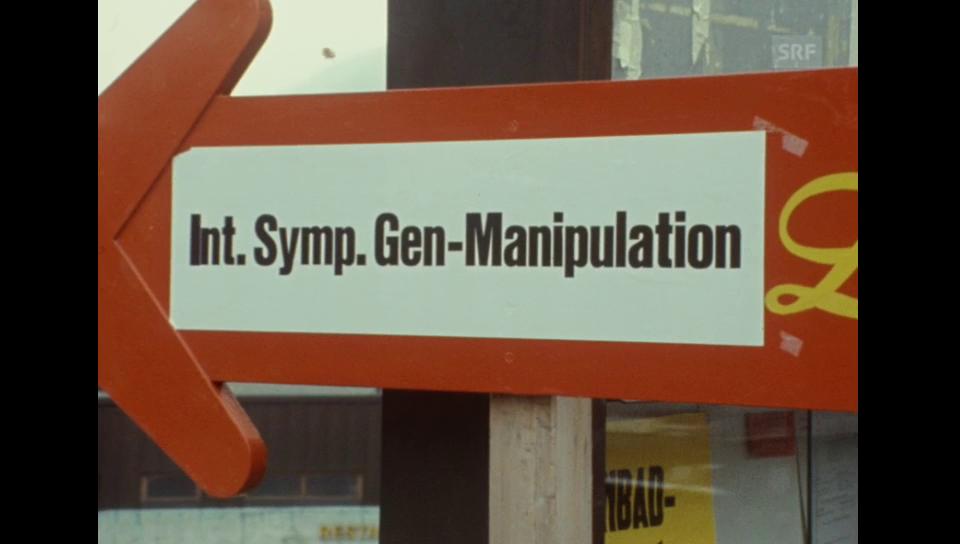 Möglichkeiten und Grenzen der Genmanipulation