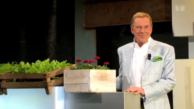 Video «Aeschbacher - Gute Nachrichten» abspielen