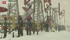 Video «Sanktionen gegen Russland machen Geschäftsleute nervös» abspielen