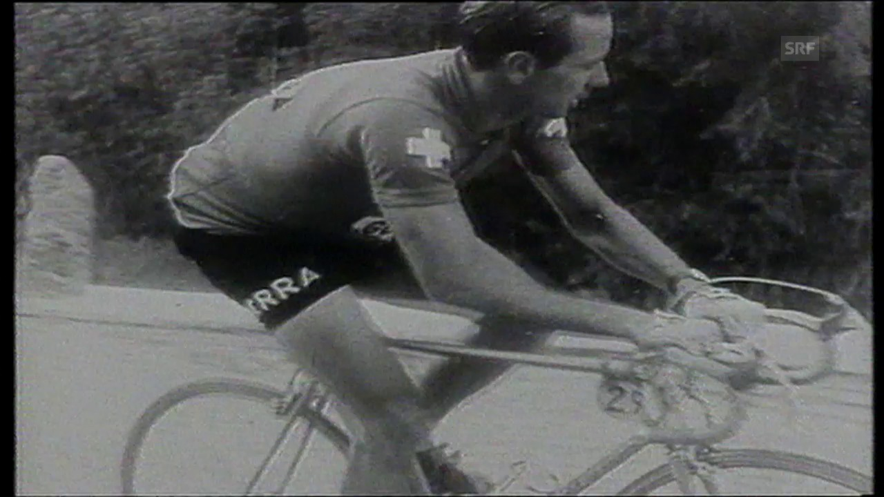 Clerici 1954