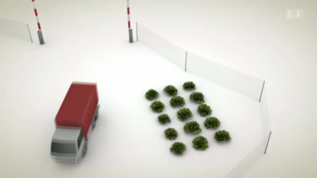 Video «Schutzzölle» abspielen