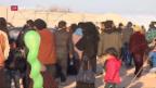 Video «Türkei soll syrische Flüchtlinge ins Kriegsgebiet zurückschicken» abspielen