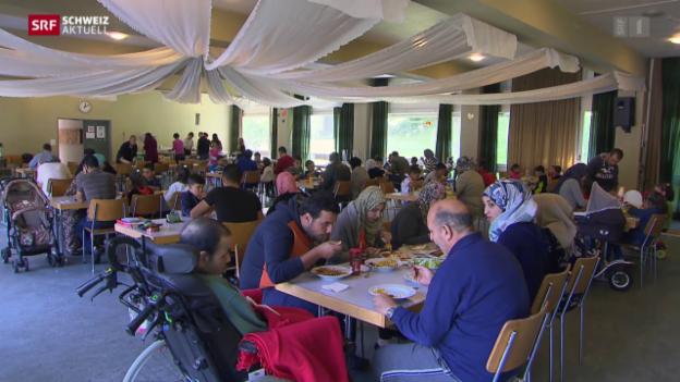 Video «Syrische Flüchtlinge und ihr neues Leben in der Schweiz» abspielen