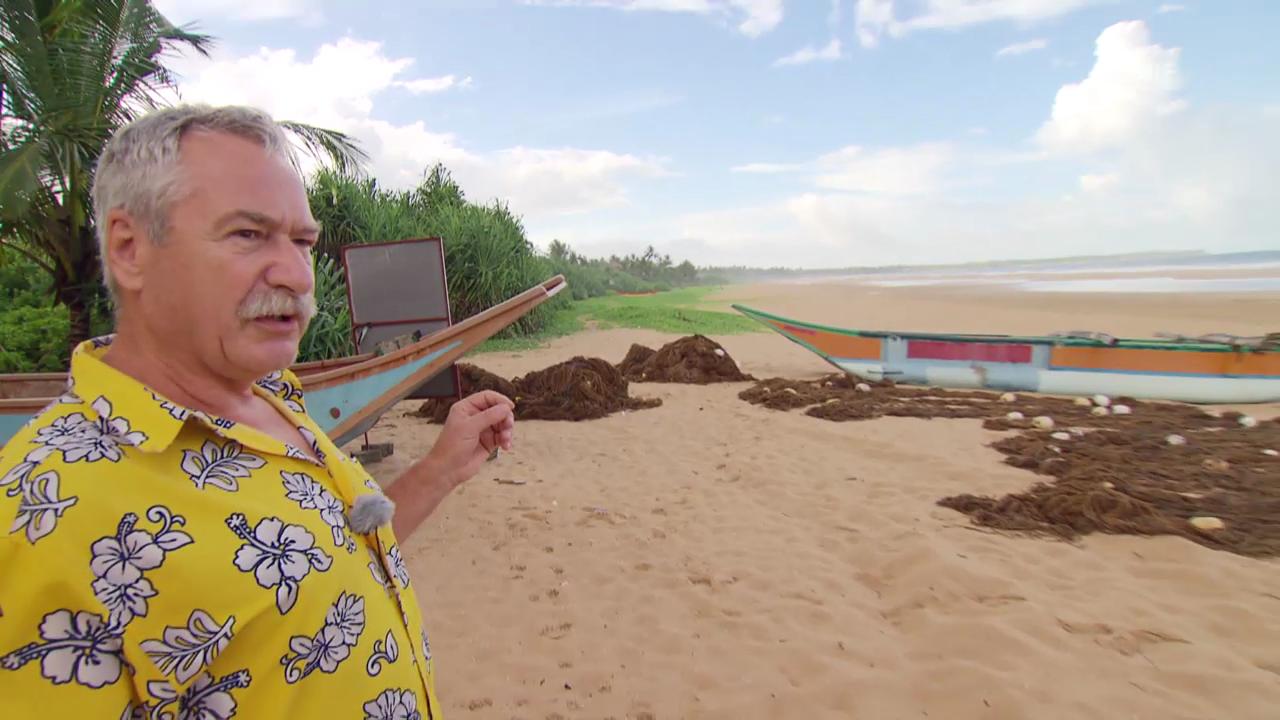 Wie der Tsunami die Küste überrollte