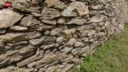 Video «Sion renoviert seine Weinbau-Terrassen» abspielen