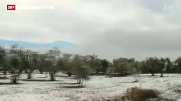 Video «Wintereinbruch im Nahen Osten» abspielen