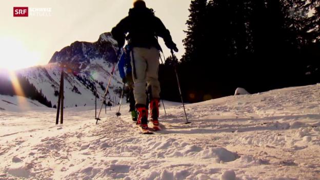 Video «PFC-Rückstände in der Natur» abspielen