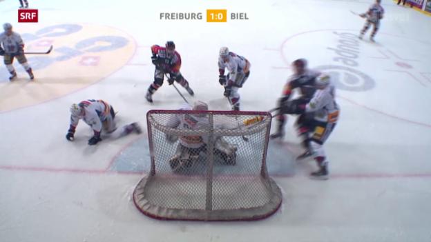 Video «Eishockey: NLA, Fribourg - Biel» abspielen