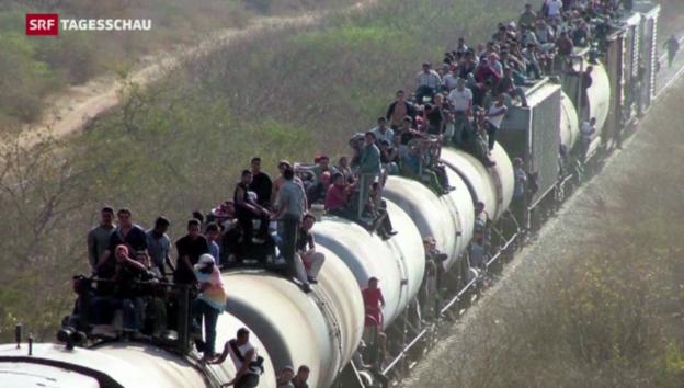 Video «Menschliches Drama an der US-Grenze» abspielen