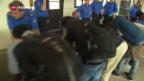 Video «Bund rechnet mit Verdopplung der Asylkosten» abspielen