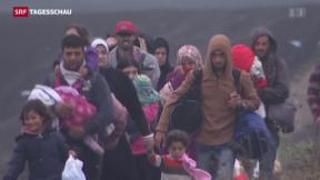 Video «Flüchtlingsdebatte in Europa» abspielen