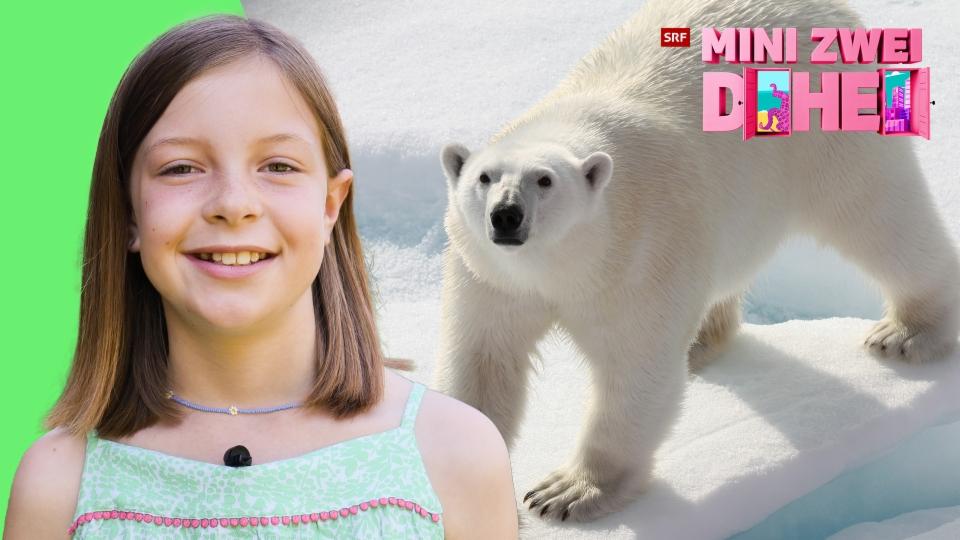 Gracie ist in den USA geboren und seit fünf Jahren in der Schweiz
