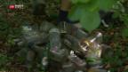 Video «Alte Deponie-Abfälle wieder an der Erdoberfläche» abspielen