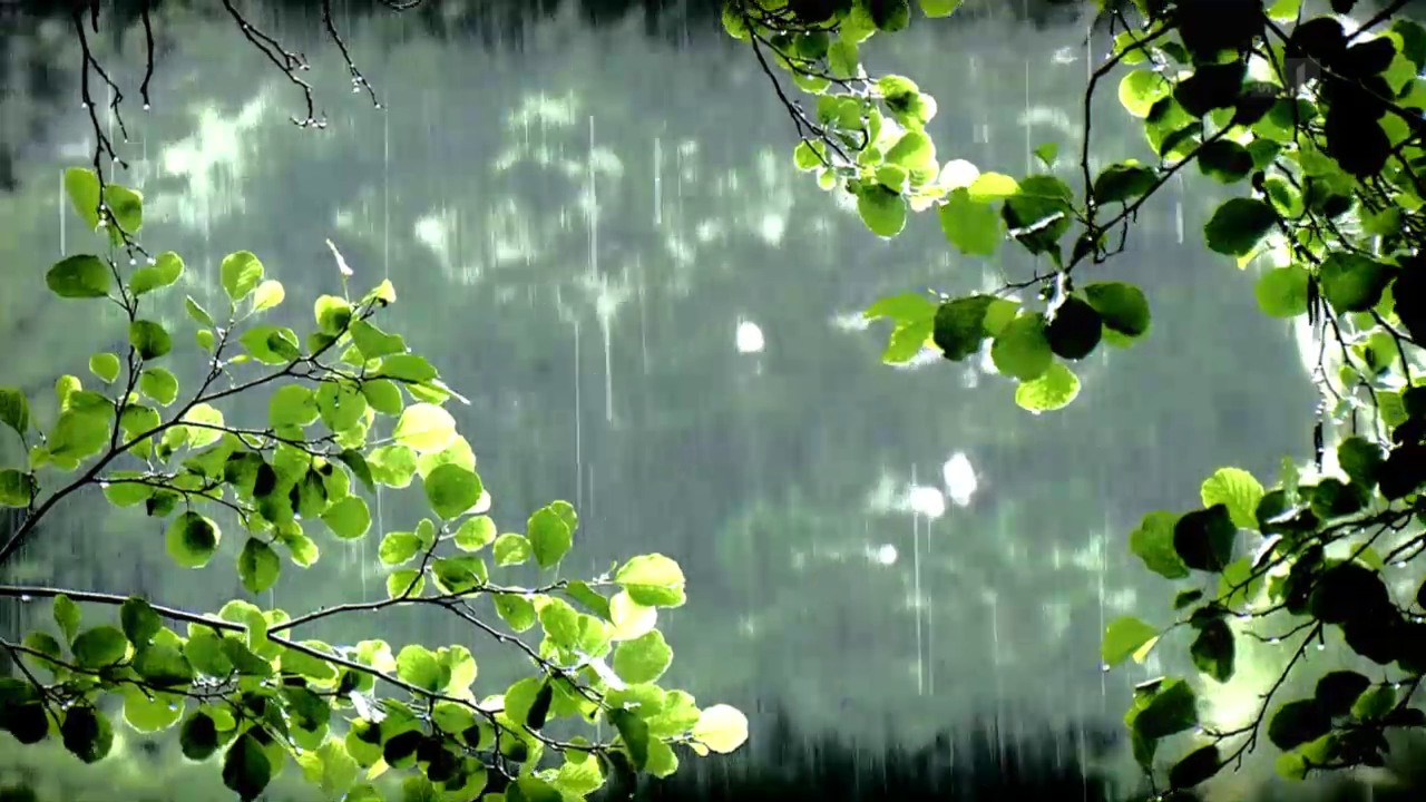 Wetterfühligkeit – Einbildung oder Realität?