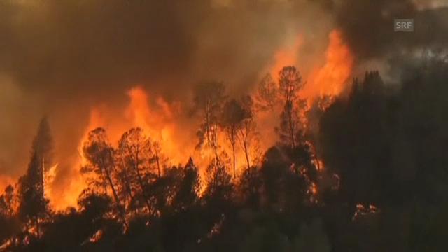Feuer im Yosemite-Park (unkommentiert)