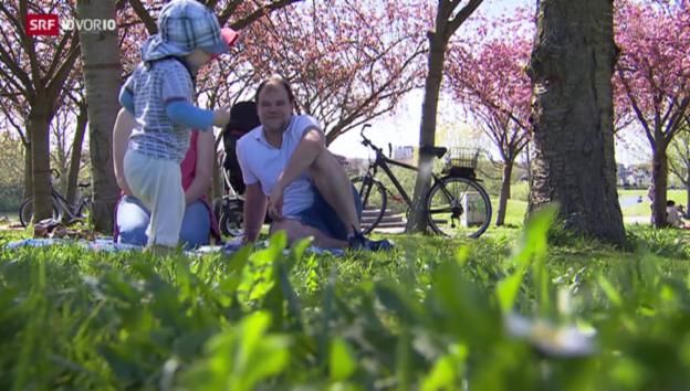 Video «Bald auch Urlaub für Väter?» abspielen