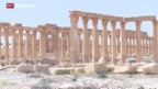 Video «Kulturgüter in Palmyra» abspielen