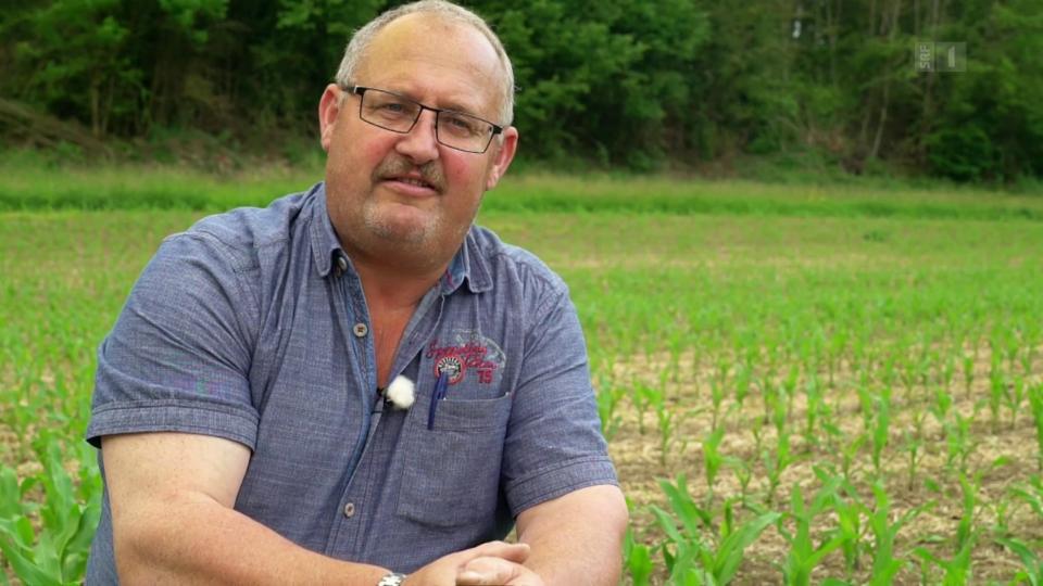 SVP-Bauer bekämpft Klimaerwärmung mit neuer Anbaumethode