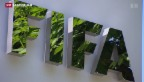 Video «FIFA zahlte Entschädigung für Henry-Handspiel» abspielen