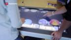 Video «Lehrerverband will Leitplanken für Sponsoring an Schulen» abspielen