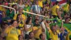 Video «Brasilianische Sportfans in der Kritik» abspielen