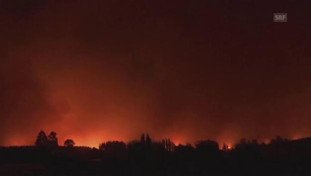 Video «Verheerende Brände: Eindrücke aus Chile (Originalton)» abspielen