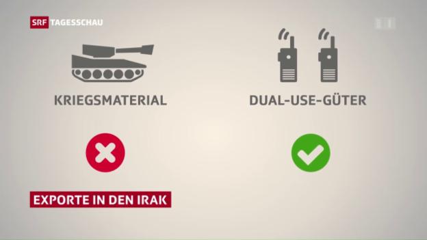 Video «Umstrittene Export-Geschäfte» abspielen