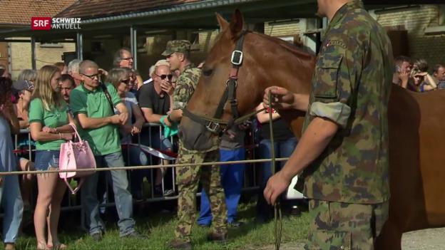 Video «Schweiz aktuell vom 17.08.2017» abspielen