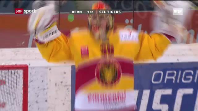 Eishockey: SCB-SCL Tigers