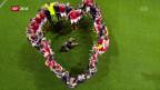 Video «Fussball Euro 2016» abspielen