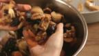 Video «Früchte für das Früchtebrot» abspielen