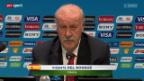 Video «Nachrichten der WM-Teams» abspielen