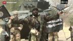 Video «Boko Haram macht Frauen zu Sex-Sklavinnen» abspielen