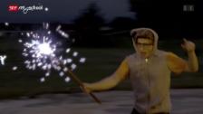 Video «Quarx: Antimaterie-Feuerwerk (2/26)» abspielen