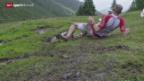 Video «LA: Swiss Alpine Marathon» abspielen