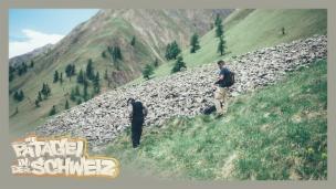 Video «Sssssss – Pät begegnet der Kreuzotter» abspielen