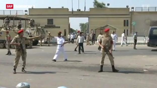 Video «Mubaraks Freilassung könnte den Konflikt in Ägypten weiter verschärfen» abspielen