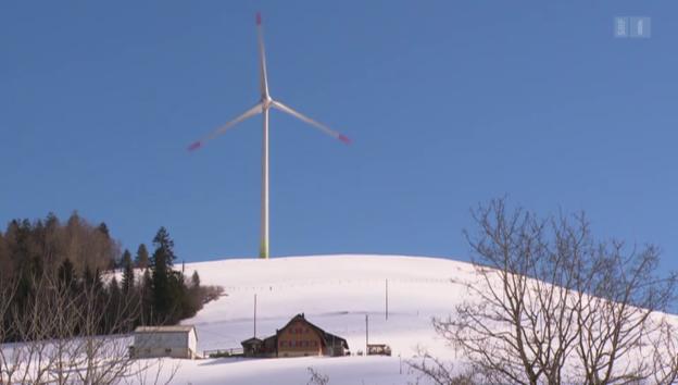Video «Streit um Windturbinen» abspielen