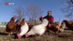 Video «Bio-Strategie bringt Coop Kritik ein» abspielen