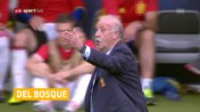 Video «Del Bosque nicht mehr Spanien-Coach» abspielen