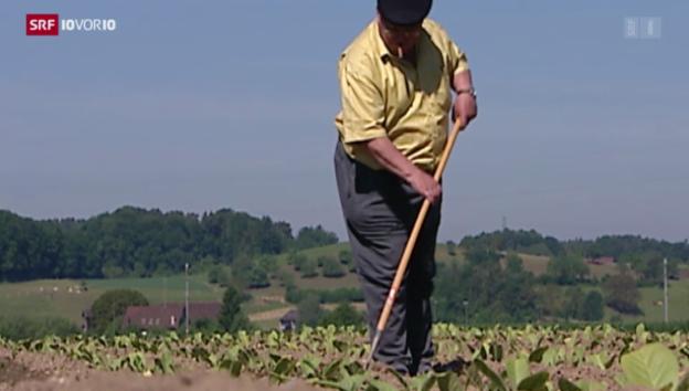 Video «35,8 Milliarden Franken für Subventionen» abspielen